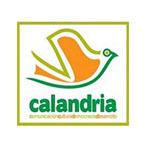 Calandria ONG